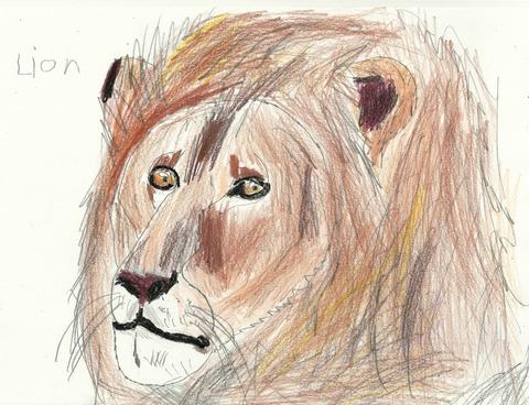 CA_Lion_jpg_480x1000_q100