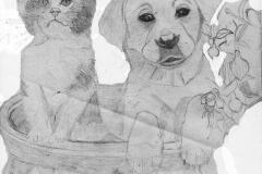 DW_cat_n_puppy_jpg_480x1000_q100