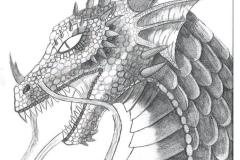 MMCB_Dragon_JPG_480x1000_q100