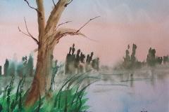 MT_tree_water_jpg_480x1000_q100