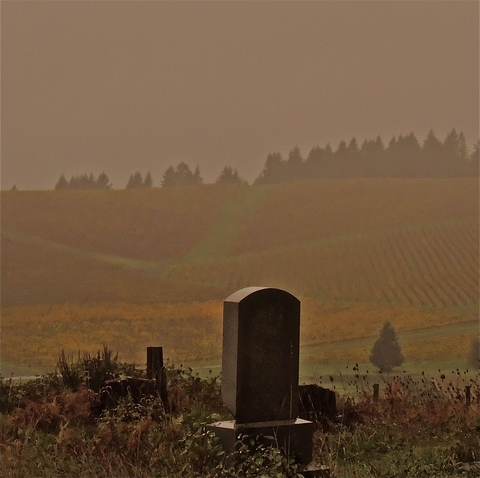 AA2015-ChrisGarza-GraveOverTheHills_jpg_480x1000_q100