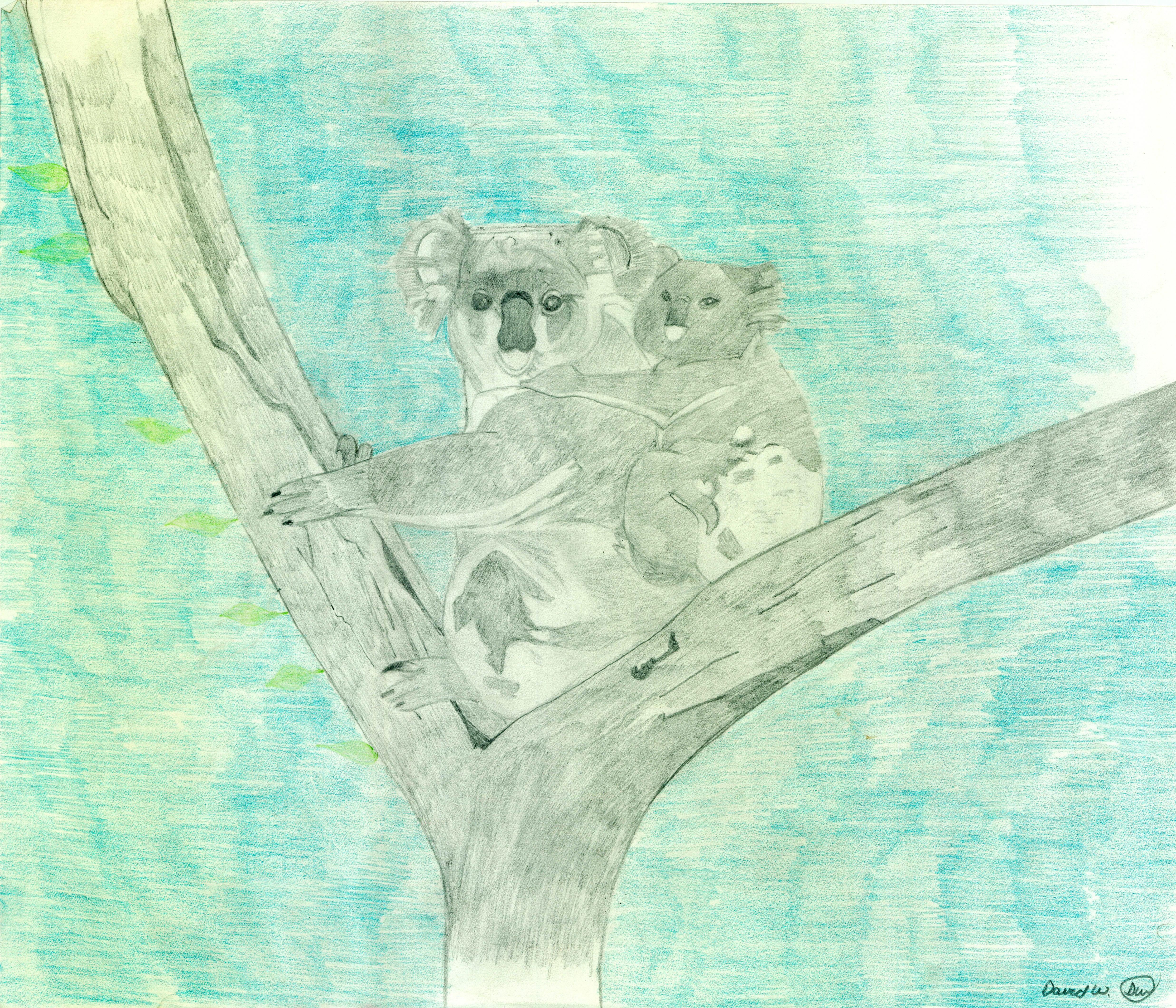 Wheeler, David--Koalas - Autism Artism 2017