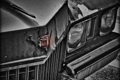 AA2015-ChrisGarza-GreyGhost_jpg_480x1000_q100