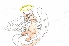 MDahl_Angel_Cat_MRD_jpg_480x1000_q100