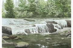 Sweet_Creek_medium_size_jpg_480x1000_q100