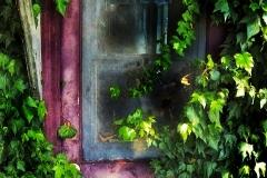 Window_jpg_480x1000_q100